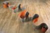 _day.Orange1