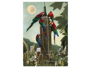 Empire parrots
