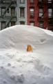 snowTaxi